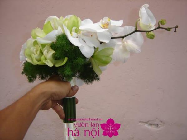 lẵng hoa lan hồ điệp đẹp